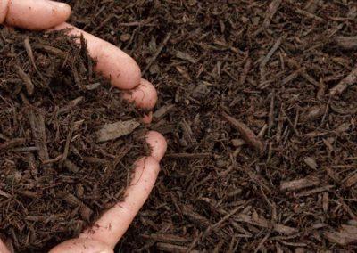banner-image-soil