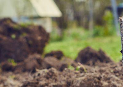 banner-image-spade-soil